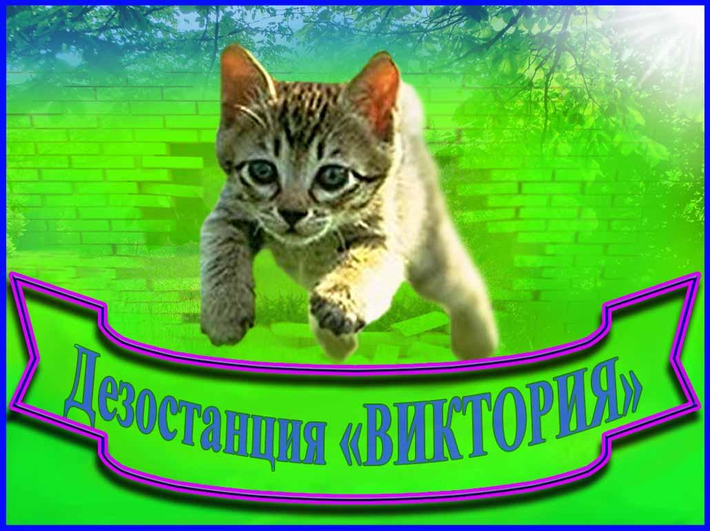 Дезостанция  «ВИКТОРИЯ»
